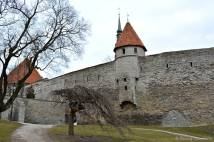 Tallinn - Tallitorn