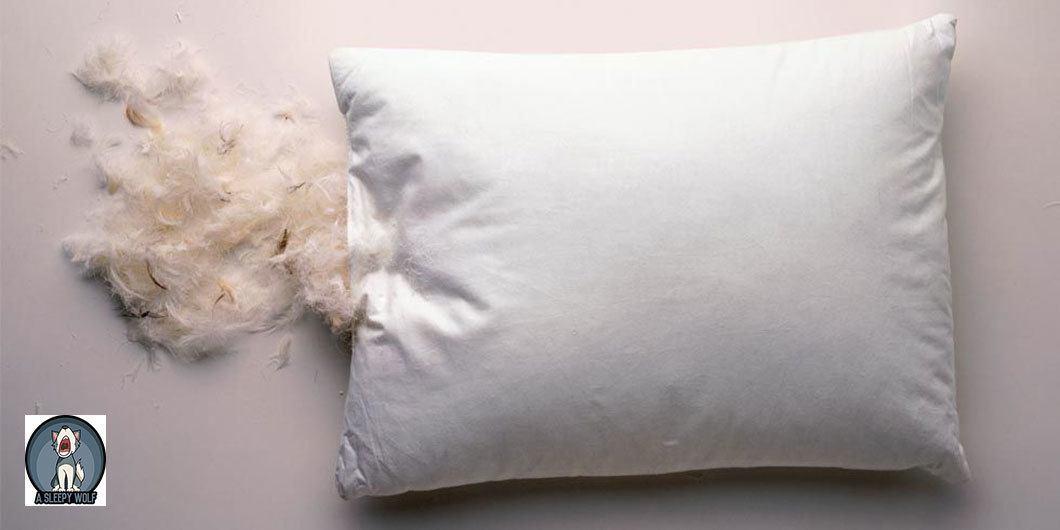 Feather-pillows-sleep-hygiene