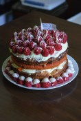 Itsgood2eatcake2_0071_edited-1