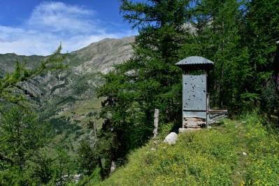 WC de campagne