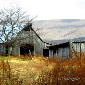 At the foot of Sewanee Mountain