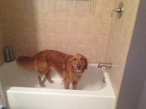 Remmy tub