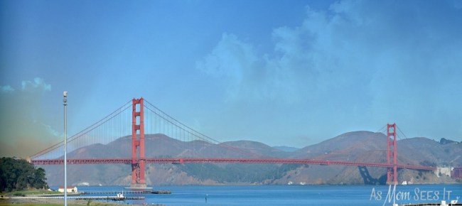 Golden Gate Bridge At Walt Disney Family Museum
