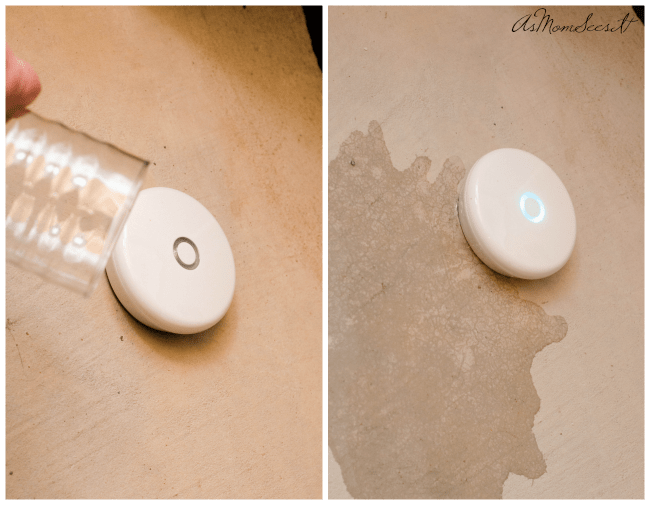 How to detect leaks in your home with the Delta Water Leak Detector
