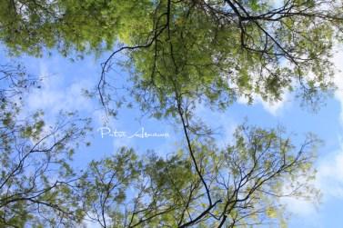 places-sceneries3-01