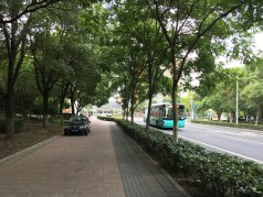 Fortunately for us, there are fewer cars here than in Beijing, which also means there are fewer cars parked on the sidewalk!