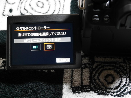 P9830029