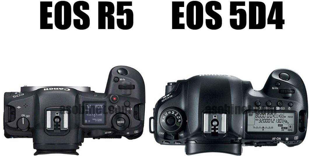 EOS R5と5D Mark IVの比較
