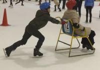 スケート ソリ