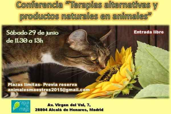 Terapias alternativas y productos naturales para animales
