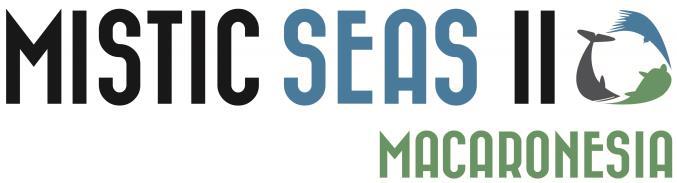 logo Mistic Seas