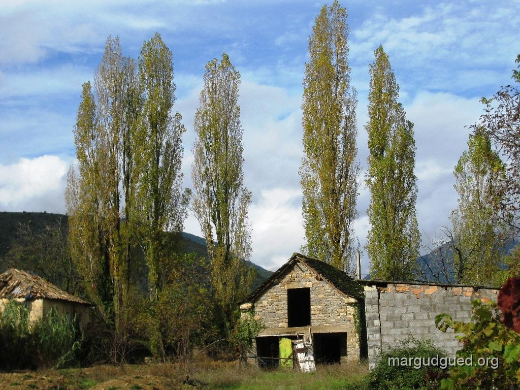 2008-10-1-1-margudguedorg