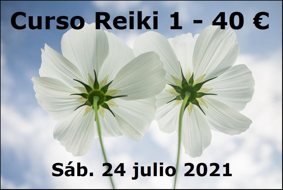 Curso Reiki 1 el 24 julio 2021