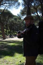 Maestro Saulín
