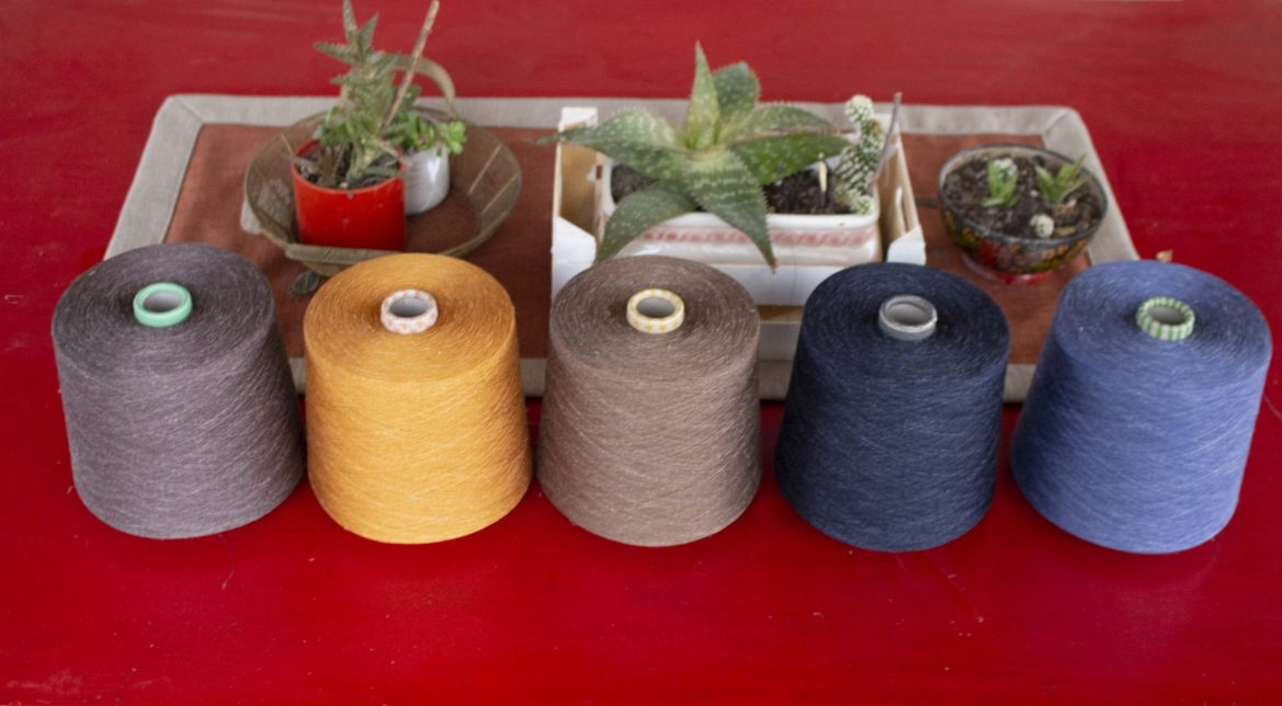 5 colori lino seta