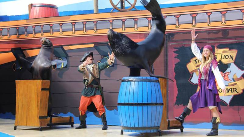 Mundomar, zeeleeuwen