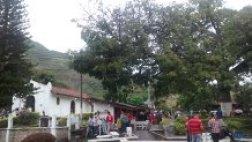 Ceiba Centenaria donde esta enterrada Palomo el caballo de  SIMON BOLIVAR