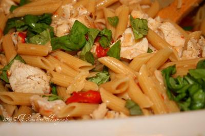 pampered pasta1