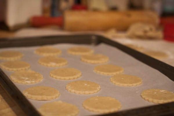 eggnog sugar cookies cutout on tray