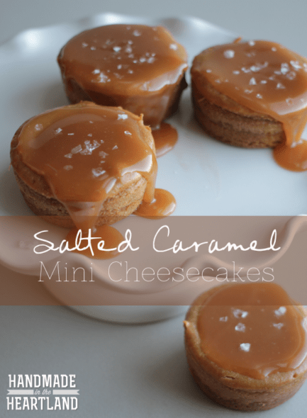 salted caramel mini cheesecake bites