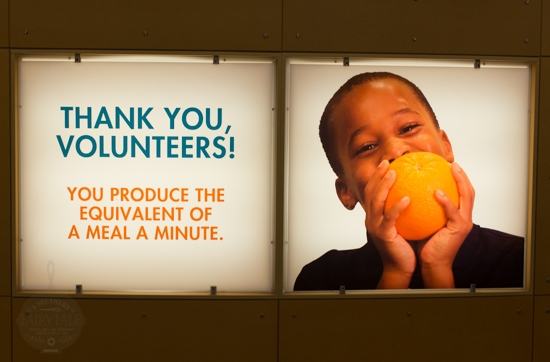 thank you volunteers at the houston food bank
