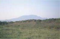 Tarayal Río Vinalopó