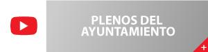 plenos-ayuntamiento-de-Aspe1