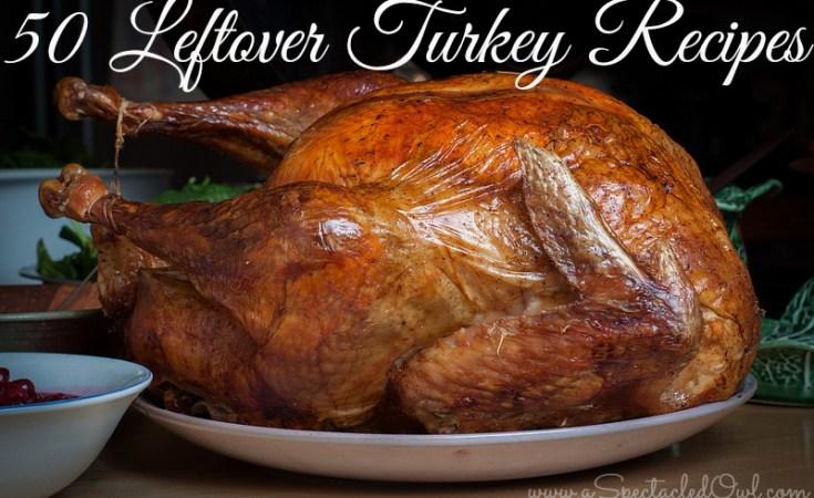 50 Leftover Thanksgiving Turkey Recipes
