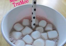 TruMoo Chocolate Marshmallow Milk