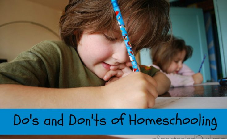 The Do's and Don'ts of Homeschooling