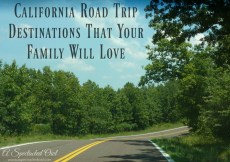 California Road Trip Destinations That Your Family Will Love