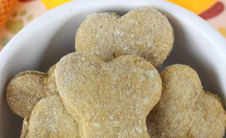 Banana Pumpkin Dog Biscuits