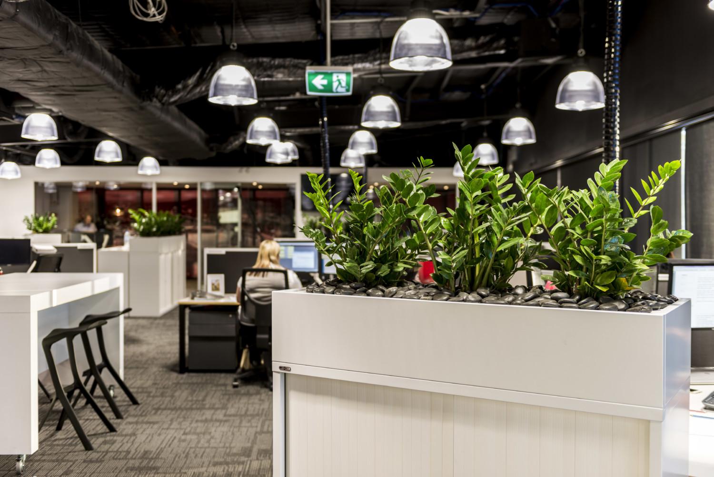 Office Plants Sydney