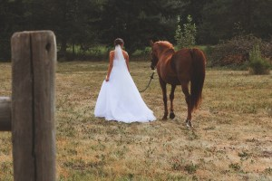 Wedding photos with horse