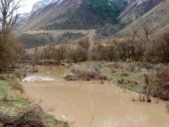 Parachute Creek, on a rainy day, about eight miles above its confluence with the Colorado River.