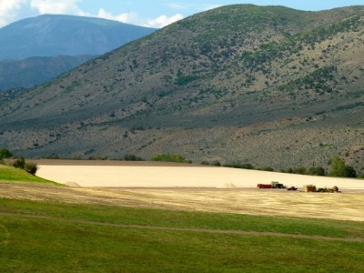 The grounds of High Mesa Ranch on Friday, Aug. 24, 2012.