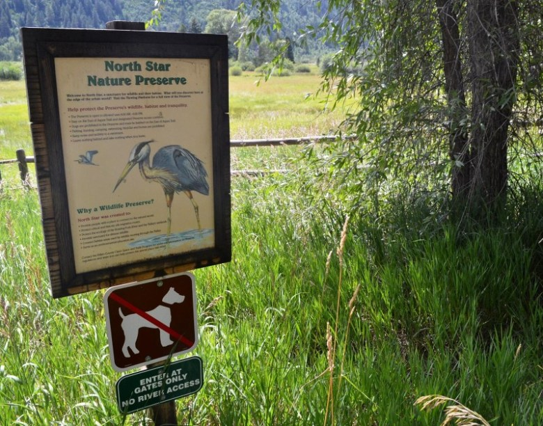 Signs along the Highway 82 bike and pedestrian trail educate North Star visitors about great blue heron rookeries and access restrictions.