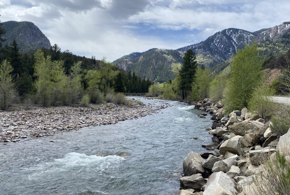 The view looking upstream on the Crystal River below Avalanche Creek. A Pitkin County group wants to designate this section of the Crystal as Wild & Scenic.