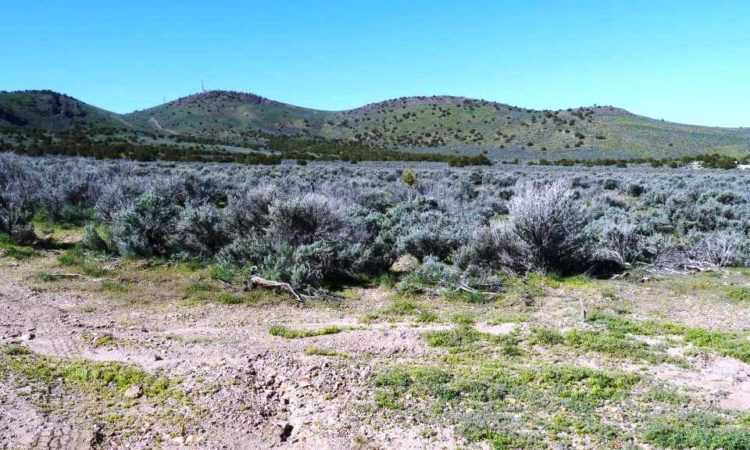 Picts-Last-Chance-Ranch-2.27-Acres-7-750x450