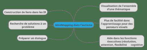 Mind Mapping: s'il vous plait, dessine moi l'autisme…