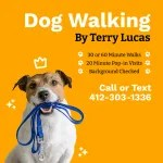 Dog Walking by Terry Lucas