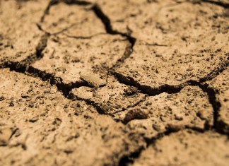 A picture of brown cracked earth