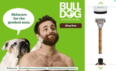 Bull Dog ad sample