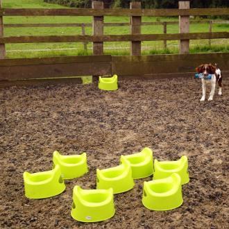 Potty Training by IKEA Equestrian aka Raised Poles training
