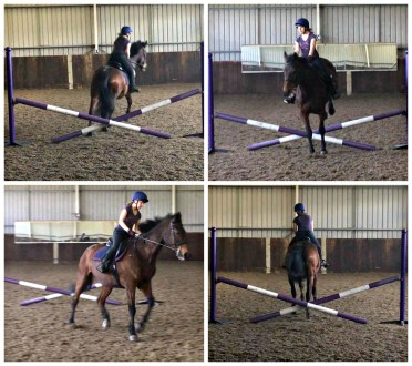 Progressive jumping exercise to train correct canter lead landing