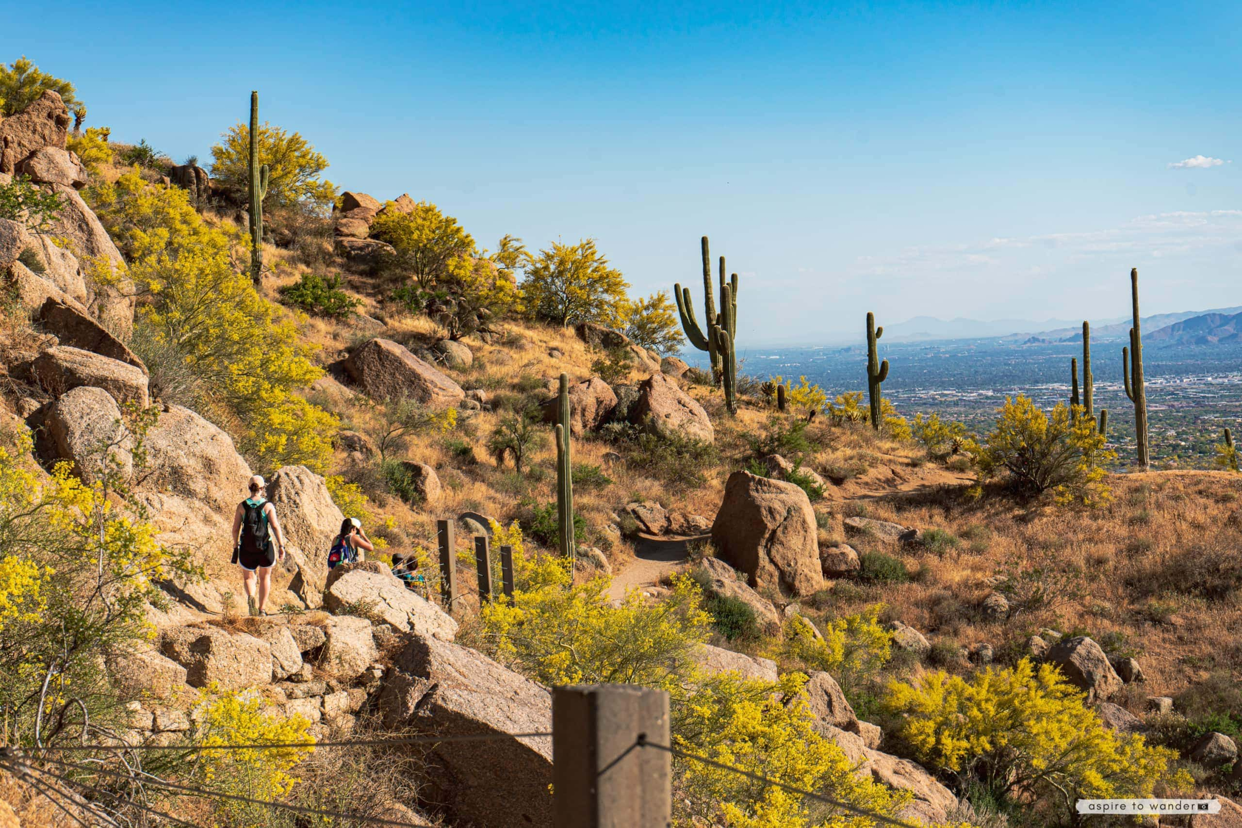 It has enough elevation to get the heart rate up and offer great views but is short enough to. Pinnacle Peak Park An Easy Hike And Pretty Views In Scottsdale Arizona
