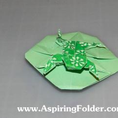 Lily Diagram Printable Thermostat Heat Pump Wiring Frog On A Pad Aspiring Folder