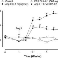 https://i0.wp.com/asploro.com/wp-content/uploads/2020/06/Fig-7_Chronic-intake-of-PUFAs-prevents-Angiotensin-II-hypertension-in-rats-in-the-first-week.jpg?resize=200%2C200&ssl=1