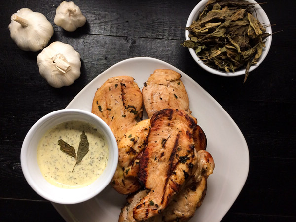 marinated grilled chicken with basil aioli