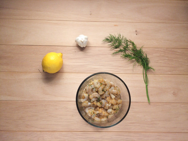 shrimp seasoning with dill, lemon and garlic